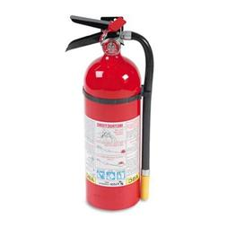 Pro 5 Fire Extinguisher