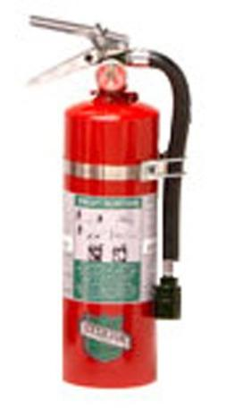 Buckeye 75550 Halotron Hand Held Fire Extinguisher with Alum